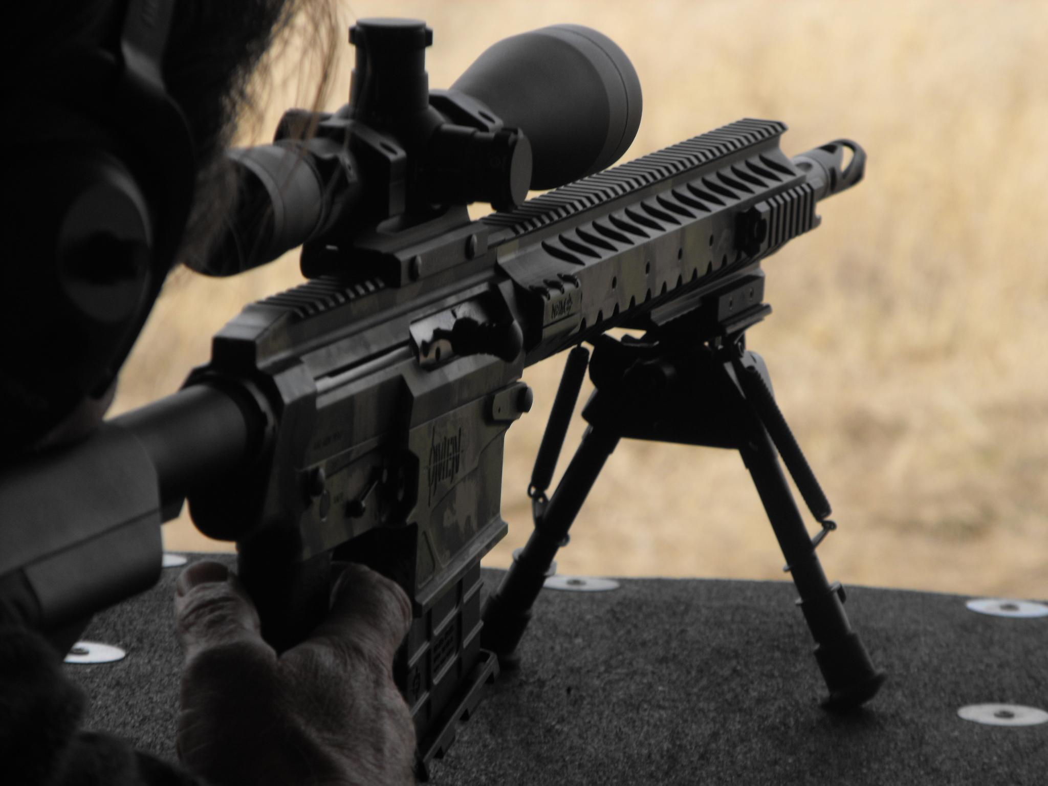 NEMO Arms Omen .300 Winchester Magnum
