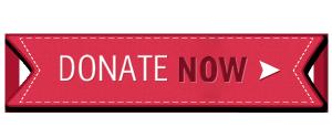christmas-donate-button[1]