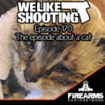 WLS 170 – The episode about a cat