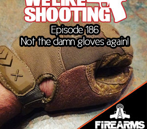 WLS 186 – Not the damn gloves again!