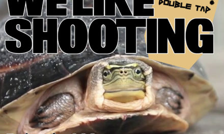 WLS Double Tap 023 – That's not how turtles work