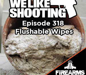 WLS 318 – Flushable Wipes