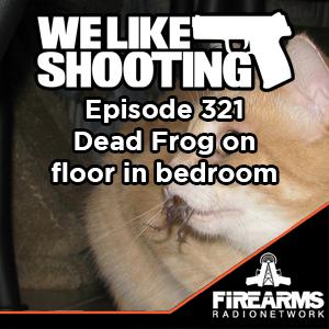 WLS 321 – Dead Frog on floor in bedroom