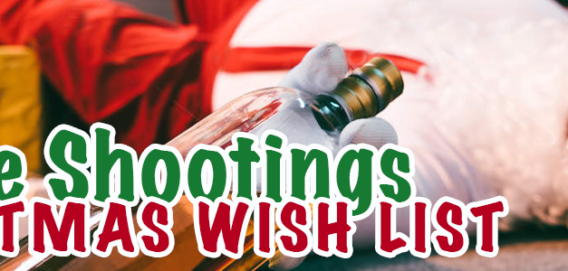 WLS Christmas gift ideas for the gun lover in your life!