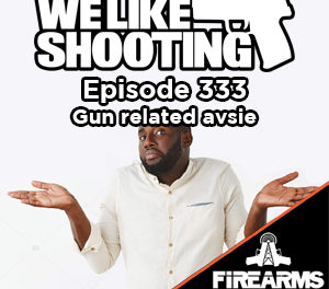 WLS 333 – Gun related avsie