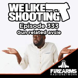 WLS 333 – Gun related avsie